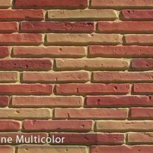 mattone multicolor 229