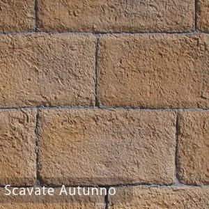pietra scavate autunno 376